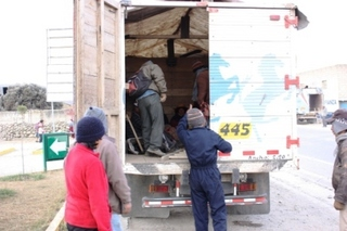 マカ収穫へ人を運ぶトラック6.JPG